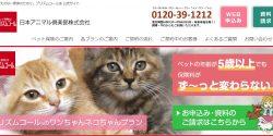 日本アニマル倶楽部の猫の保険をどこよりも詳しく解説