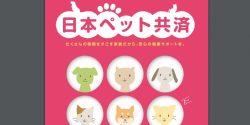 日本ペット共済の猫の保険をどこよりも詳しく解説
